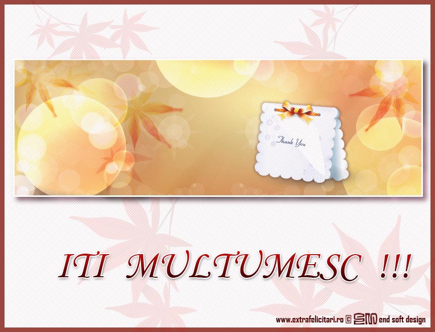 felicitari_online.jpg